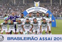 Palmeiras campeão. Foto: Cesar Greco/Agência Palmeiras