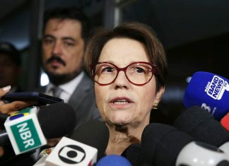 Tereza Cristina. Foto: Antonio Cruz/Agência Brasil