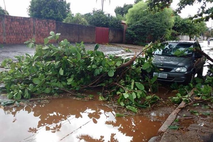 Chuva causou transtornos. Foto: Hosana de Lourdes/Tudo do MS/Reprodução