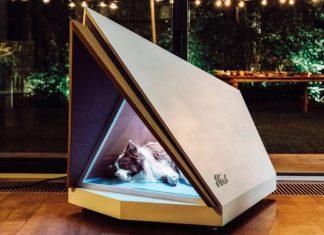 Ford criou uma casa de cachorros. Foto: Divulgação