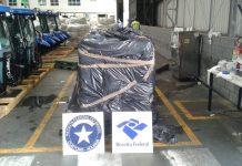 Droga estava dentro de um contêiner carregado com carne de frango congelada. Foto: Receita Federal/Divulgação