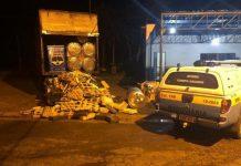 Motorista é preso com 1,6 toneladas de maconha em caminhão na MS-276. Foto: PMR/Divulgação