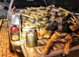 Drogas foram encontradas em fundo falso de caminhão. Foto: Polícia Federal/Divulgação