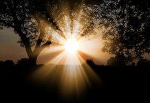 Sol. Foto: Pixabay