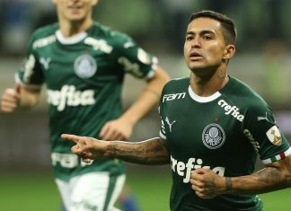Dudu comemora vitória do Palmeiras. Foto: Cesar Greco/Agência Palmeiras