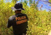 Agente da Polícia Federal. Foto: Reprodução