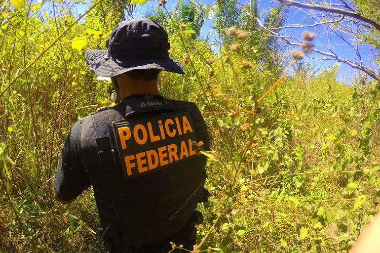 Resultado de imagem para Polícia Federal investiga Dia do Fogo na Amazônia