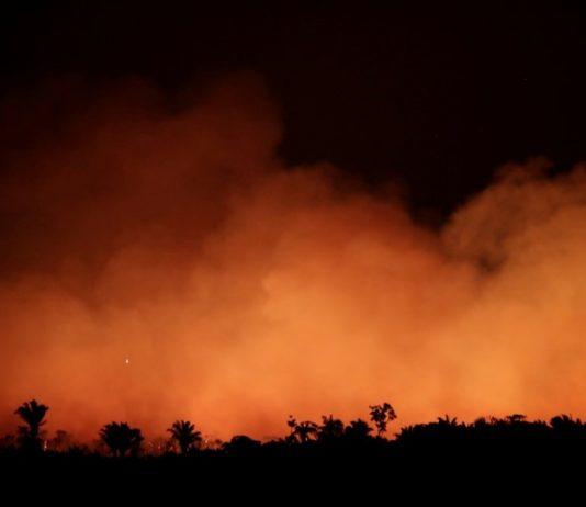 Amazônia em chamas. Foto: Reprodução