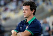 Fernando Diniz. Foto: Lucas Merçon/Fluminense