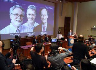 Prêmio Nobel de Medicina de 2019. Foto: TT NEWS AGENCY