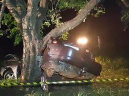 Carro colidiu contra árvore. Foto: Reprodução