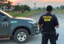DOF. Foto: Reprodução