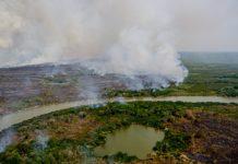 Incêndio no Pantanal, em Mato Grosso. Foto: Mayke Toscano/Secom-MT