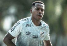 Robinho chegou a iniciar treinos no Santos, mas contrato foi suspenso. Foto: Ivan Storti/Santos