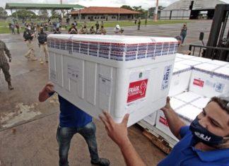 Ministério da Saúde pode encaminhar quinta remessa de vacina para MS. Foto: Saul Schramm/MS.GOV