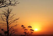 Umidade do ar em Mato Grosso do Sul se assemelha a de deserto. Foto: Mônica Alves/MS.GOV/Reprodução