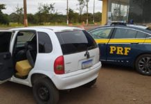 PRF apreende 201 kg de maconha em Nova Alvorada do Sul (MS). Foto: Divulgação