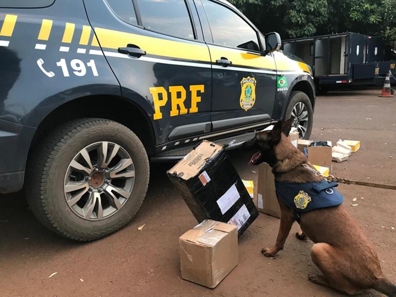 PRF e Correios realizam operação conjunta para interceptar encomendas com drogas em Campo Grande (MS). Foto: Divulgação