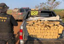 Jovem de 18 anos é preso em S-10 com mais de uma tonelada de maconha. Foto: Divulgação